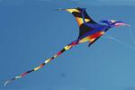 designer kite image